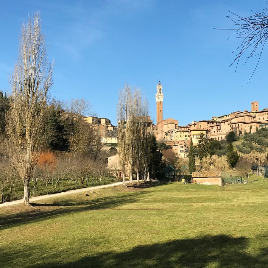 Hiking and Tour in Siena