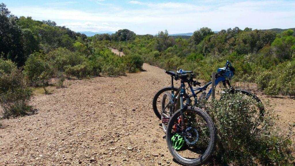 trekking mountain bike