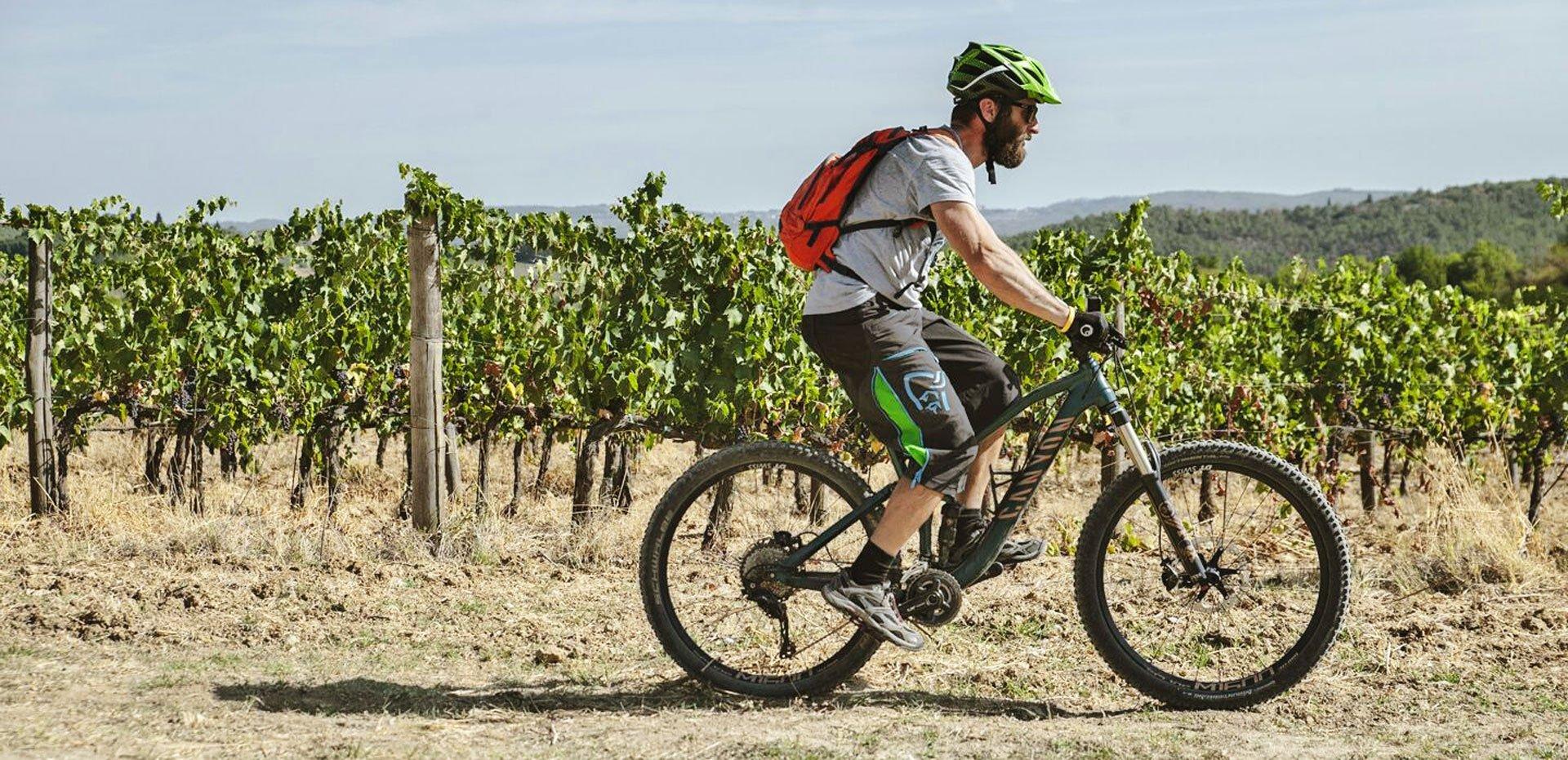 mountain bike siena