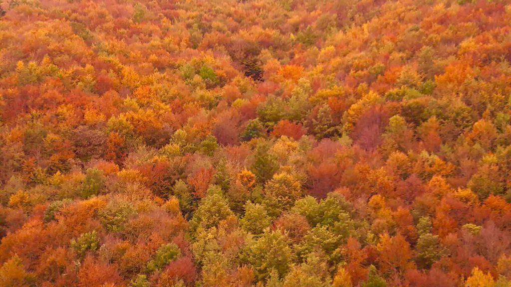 autunno trekking toscana
