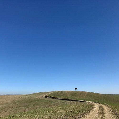 sentieri via francigena