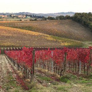 lornano wine trekking