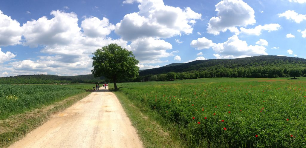 hiking trails italy tuscany