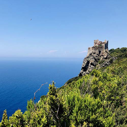 trekking e escursione all'isola di Gorgona