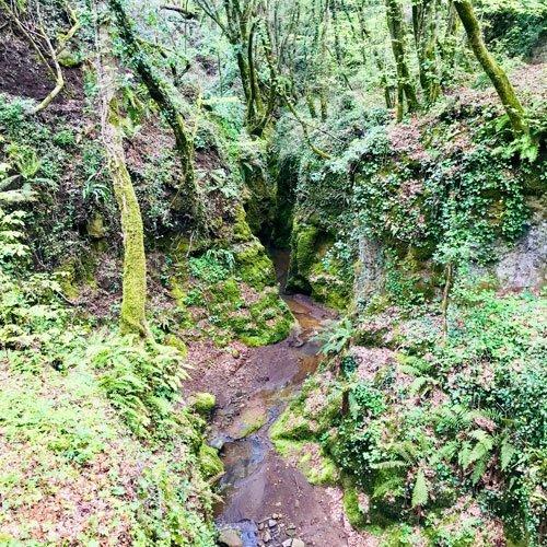 sentieri delle vie cave