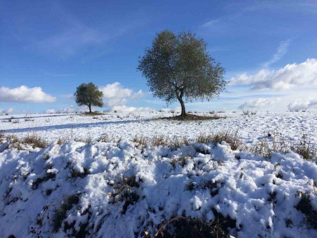 inverno trekking camminare