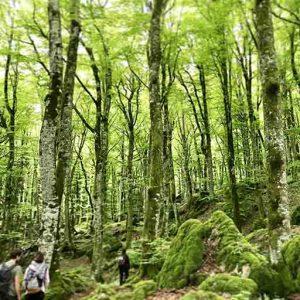 trekking camminare stagioni